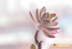 重庆评副教授职称挂名教材成功
